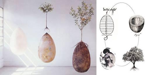 Uudne orgaaniline matmismeetod muudab sind pärast surma puuks