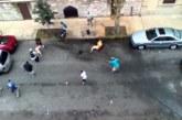VIDEO: Eriti võigas – kaks Pit Bull terjerit söövad tänval inimest