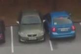 VIDEO: Eestis saab lube osta? TTÜ parklas retsib oskamatu juht parklas autosid