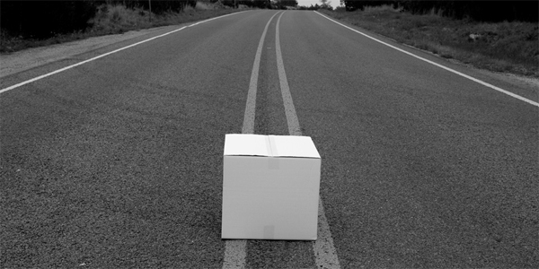 FOTOD: Kaks politseiniku leidsid maanteelt pappkasti, mille sees oli...