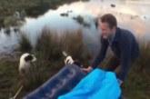 VIDEO: Väga julm nali – vaata, mida need mehed oma magava sõbraga teevad