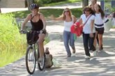 VIDEO: Emal kukub beebi ratta pakiraamilt asfaldile