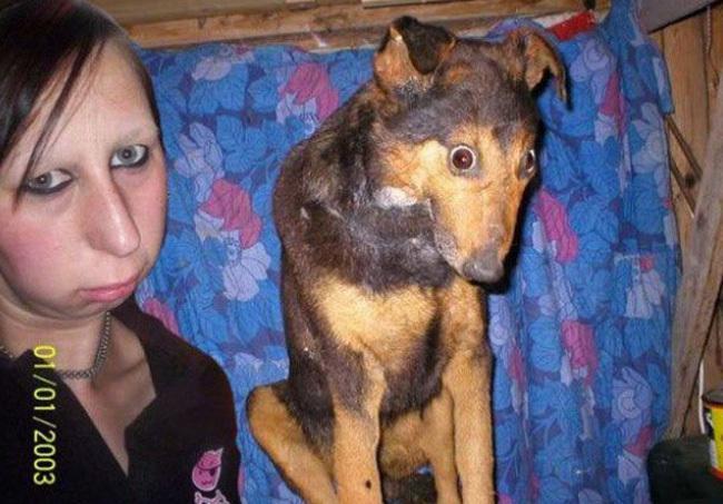 FOTOD: Tõestus, et koerte peremehed näevad välja samasugused nagu nende koerad