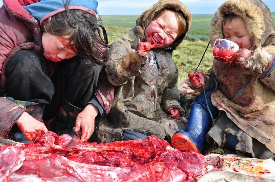 Siberi lapsed söömas toorest liha