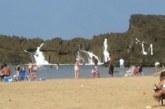 VIDEO: Tundub nagu tavaline rand, kuid 30 sekundi pärast muutub kõik…