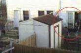 SÜDANTLÕHESTAV VIDEO: Naaber filmis 6 nädala jooksul naabri aeda – vaata, mis seal toimus…