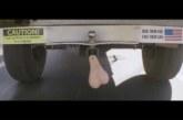 VIDEO: Maailma suurim persevest ?!