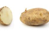 HOIATUS KÕIGILE – väike tüdruk jäi  orvuks, kuna kartulid surmasid kogu tema perekonna! Loe, miks nii juhtus…