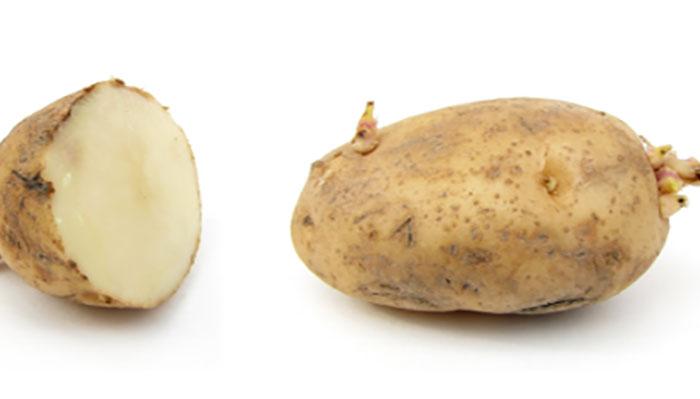 HOIATUS KÕIGILE - väike tüdruk jäi  orvuks, kuna kartulid surmasid kogu tema perekonna! Loe, miks nii juhtus...