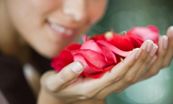 4. Nina tunneb ära 50 000 erinevat lõhna ning talletab need mällu.