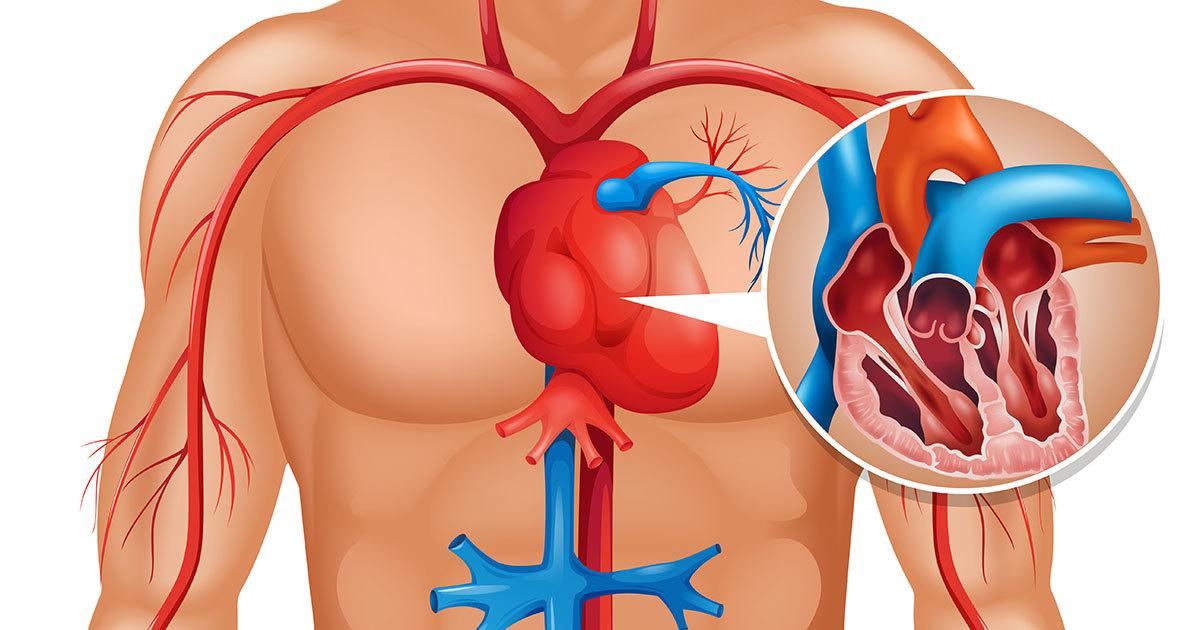 1 kuu enne südameinfarkti annab keha sulle sellest teada - 8 olulist sümptomit, mida esineb tõenäoliselt üks kuu enne südameinfarkti