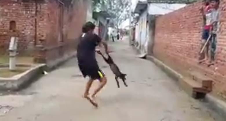 JULM VIDEO: Jube, mida see mees koerale teeb - keerutab jalgadest ja viskab vastu kiviseina