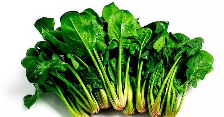 5. Rohelised lehtköögiviljad Üheks meie kõige võimsamaks liitlaseks maksa puhastamisel on rohelised lehtköögiviljad, mida võib süüa toorelt, keedetult või mahlaks pressituna. Äärmiselt kõrge taimse klorofülli sisaldusega, imavad leherohelised vereringest keskkonnatoksiine. Ühes nende erilise võimega neutraliseerida raskemetalle, kemikaale ja pestitsiide, pakuvad need puhastavad toidud maksale tugevat kaitsemehhanismi. Püüa lülitada oma dieeti leherohelisi nagu kolokvint, rukola, võilillelehed, spinat, sinepilehed ja sigur. See aitab suurendada sapi, aine, mis eemaldab organitest ja verest jääkained, teket ja voolu.