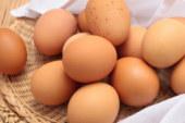 6 põhjust, miks munad on üheks kõige tervislikumaks söögiks kogu planeedil