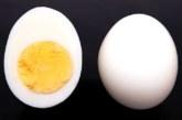 LOE, MIS JUHTUB SINU kehaga, kui sa sööd iga päev ühe muna