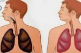PRAEGUSTELE JA ENDISTELE suitsetajatele: see jook puhastab teie kopse!