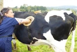 VIDEO: SELLISED on tänapäeva farmid