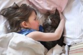 TÄHELEPANU – KAS TEADSID, ET võid pimedaks jääda, kui kass sind lakub