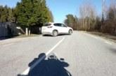 VIDEO: Harju-Risti-Riguldi-Võntküla mnt. Autojuht keeras mootorrattale ette ise läbi akna naerdes