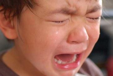 PÄRAST SUURT PAHANDUST ütles ema oma lapsele, et mingu nüüd ja otsigu endale ise vits…