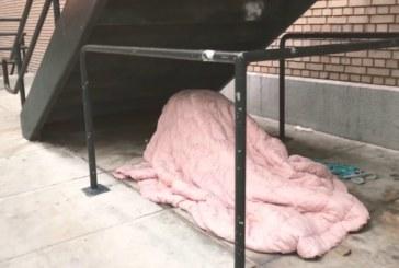 VIDEO: KODUTUD JAGAVAD armastust trepi all kattes ennast rätikuga