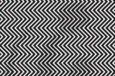 KUI HÄSTI su silmad ja aju omavahel suhtlevad? ILLUSIOON – mis loom on pildil?