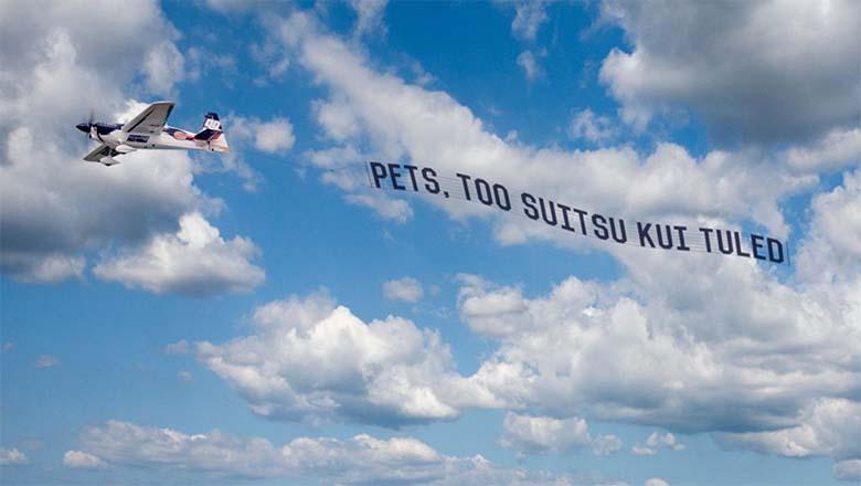 Rikaste naljad? Tallinna kohal lendas täna varahommikul kummalise sõnumiga lennuk