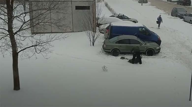 VIDEO: Lasnamäel raius mees maha üksiku kuuse oksad, et oma rondiga lumehangest välja sõita