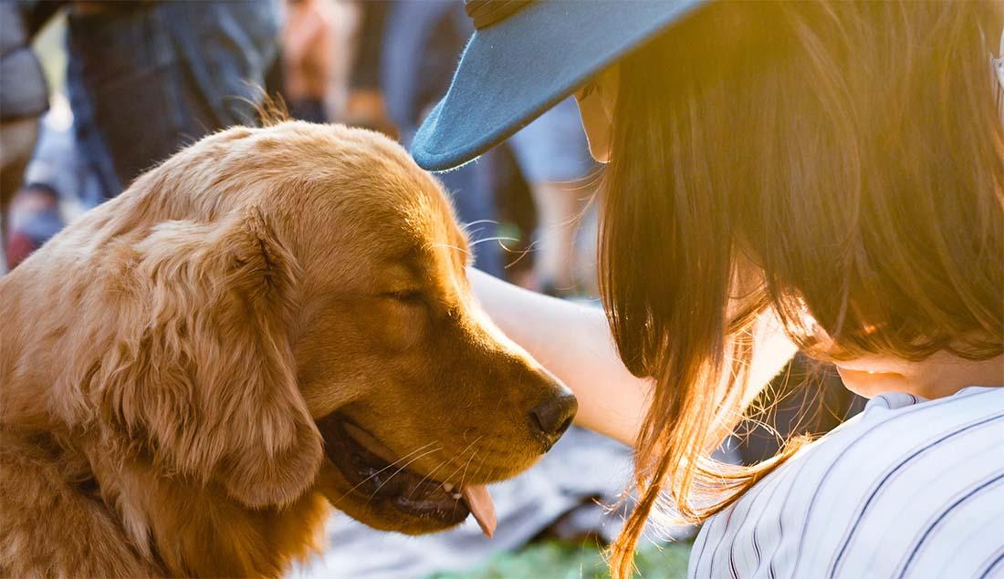 35 põhjust, miks koer on parem kui naine