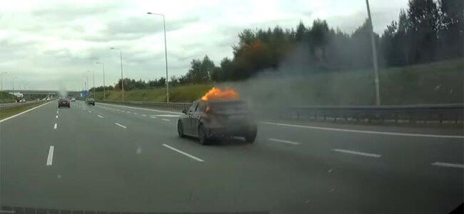 VIDEO: OH ÕUDUST, looduse säästmine võttis inimelu – maanteel süttis auto põlema…